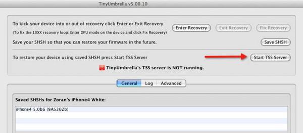 Tinyumbrella - dugme za startanje TSS servera