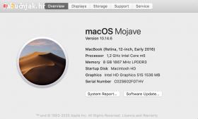 P: MacBook 12